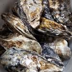鎌島水産 - 料理写真:牡蠣