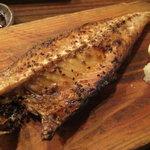 炉端のじんべえ - トロ鯖の開き