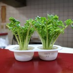 中華居酒屋 上海ママ料理 - 大根の葉の水栽培