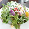 ミサキ イタリアーノ ボッカ - 料理写真:シーザーズサラダ