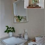 カフェセジョリ - お手洗いの中の洗面台