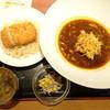 札幌スープカレー本舗 - 料理写真:本日のカレー