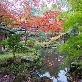 加賀藩ゆかりの名勝・玉泉園の景観美