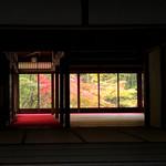 99867497 - 【天授庵 】書院を通した庭園の紅葉も絵になります