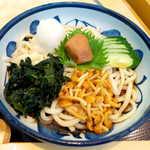 銀座 木屋 - 麺は讃岐に比べると細めだが、コシは十分。でっかい梅干しは存在感満点!