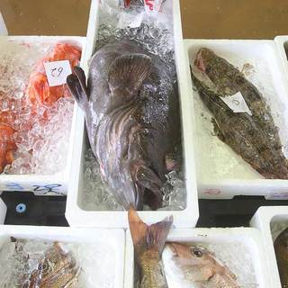 漁師さんが大切に水揚げした離島の魚たち。