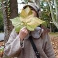 ☆masako☆