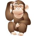Monkeyiii