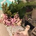my flowery days
