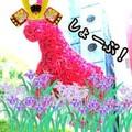 八王子⇔新宿大好き多摩っこ