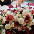 camellia212