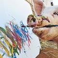 コスパに踊らされる豚