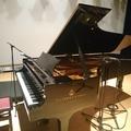 平熱のピアニスト