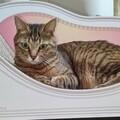 猫の王子様