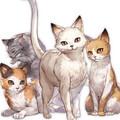 りとるcats